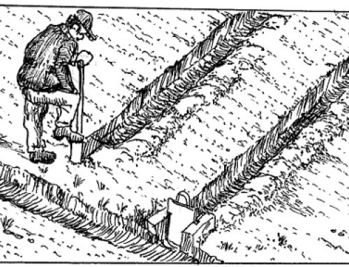 Diversion furrows (run-on ditches, run-on or ex field RWH)